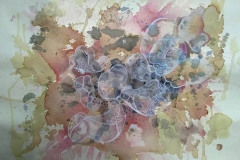 De-la-serie-celulas-4-remolacha-te-mate-lapiz-color-acrilico-collage-en-papel-para-acuarela-antiguo-70-x-50